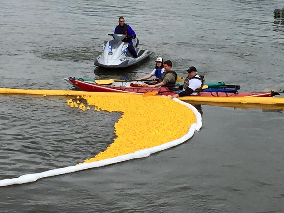 People kayaking by plastic ducks