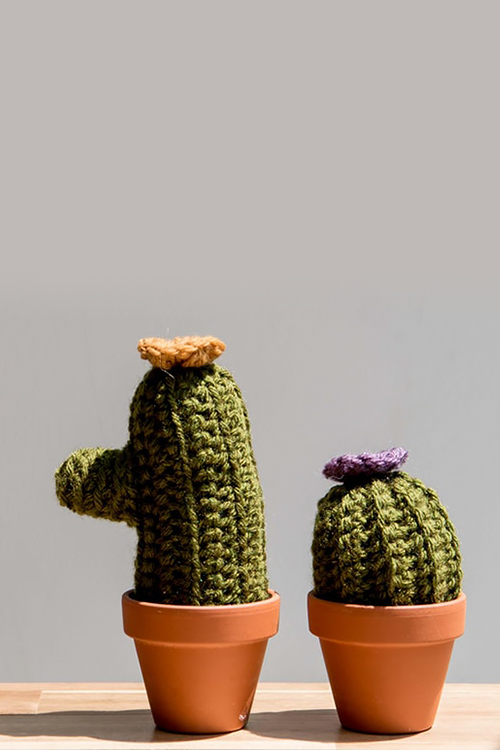 Crocheted cactus in pots created at a crafting class in Anacostia