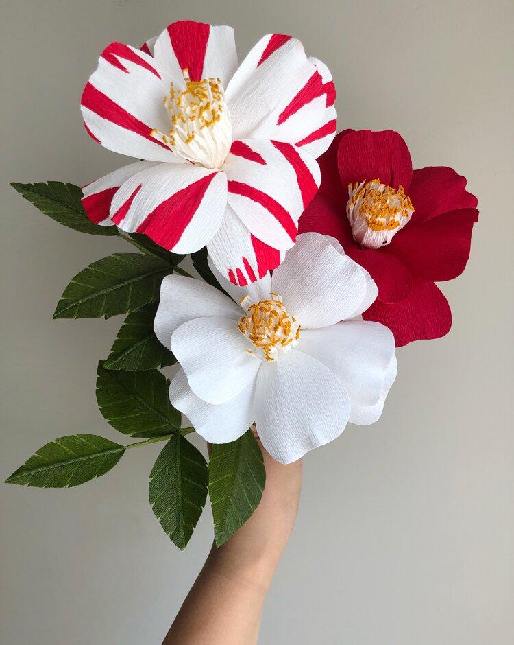HOLIDAY CAMELLIAS PAPER FLOWER WORKSHOP